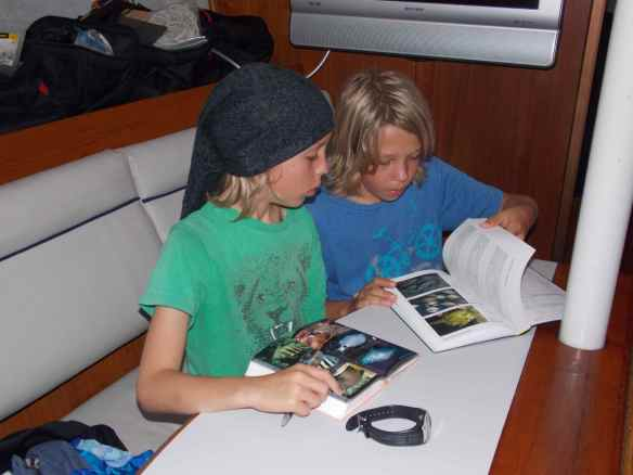 After snorkeling, the boys (and us) head for the fish books to identify what knew sea life we saw.