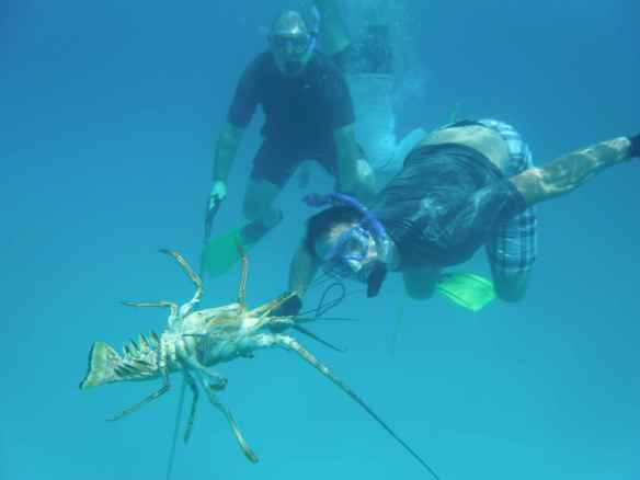 David and Bill with the lobster.  It was a team effort of 3 of the guys to get him speared.