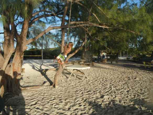Cole swinging from a tree at Chat & Chill beach.