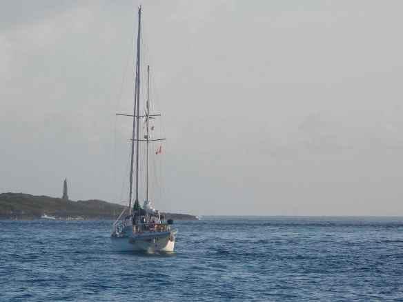 Sea Camp