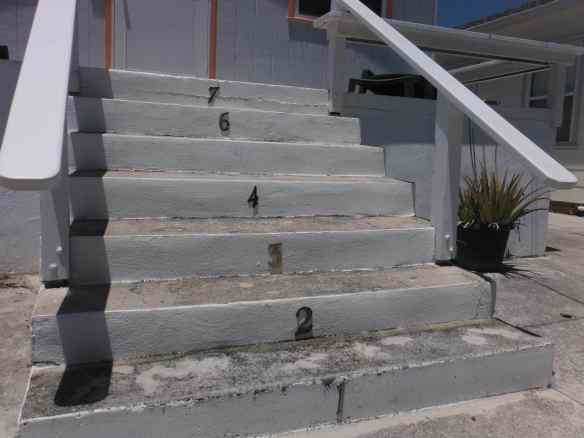 This cracked us up.  Any ideas on why someone would number their steps to their house?