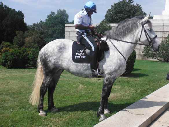 The mounted police in front of the Lincoln Memorial.